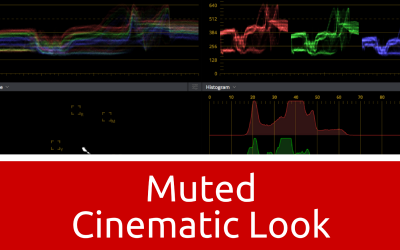 How to – Muted Cinematic Look in DaVinci Resolve 12.5